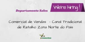 Comercial de Vendas – Canal Tradicional de Retalho Zona Norte do País
